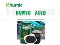 How to distinguish the quality of humic acid fertilizer