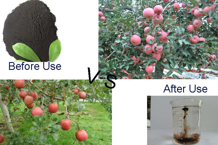 How super potassoum humate is used in Agriculture
