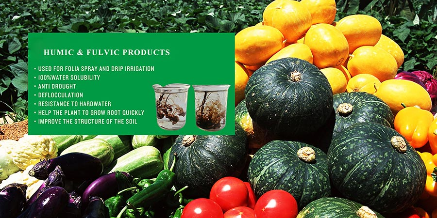 Humic and fulvic acids can increase nutrient uptake in plants