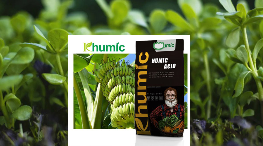 Humic acid is a compliment to fertilizer