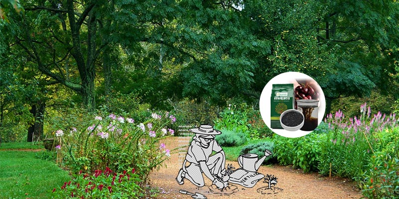 Are Humic Acid good for the garden