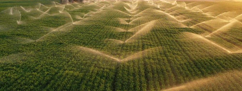 The humic fuvilc acid for water soluble liquid fertilizer -FAQ