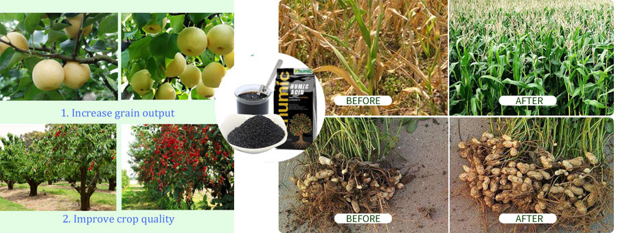 Humic acid potassium fertilizer increasing the crop yields