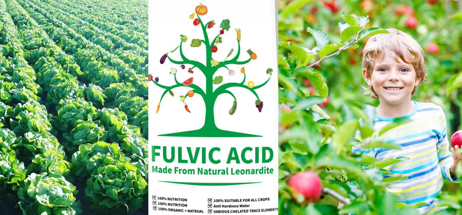 Why you choose mineral fulvic acid rather than biochemical one