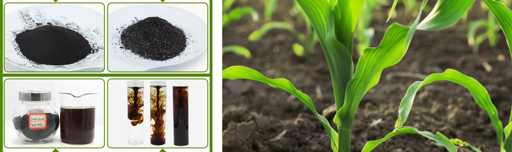 The Difference Between Humic Acid And Fulvic Acid