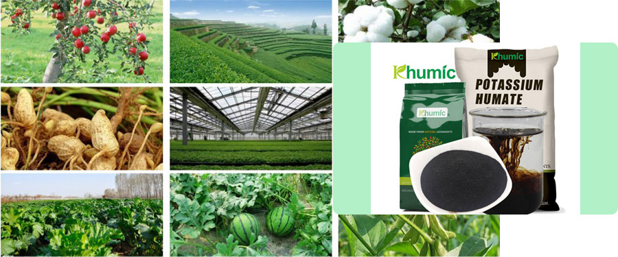 Why the new type of humic acid fertilizer can stand out among many fertilizers